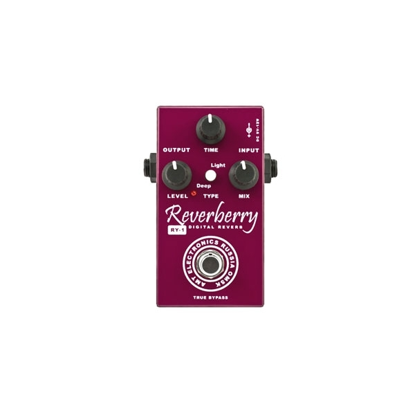 Amt Electronics - Reverberry Riverbero Digitale