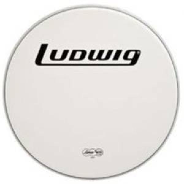 Ludwig - [LW4222] Pelle Cassa 22 Smooth White Heavy